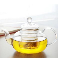 PHP 624. XIYOYO Heat Resistant Glass Teapot Infuser Tea Pot 600Ml (Clear) - intlPHP624