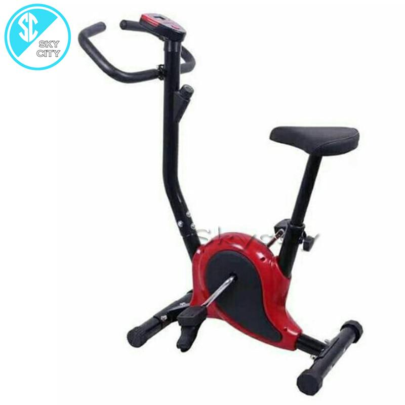 c432a3a7462 skycity DS366 indoor upright stationary belt exercise bike