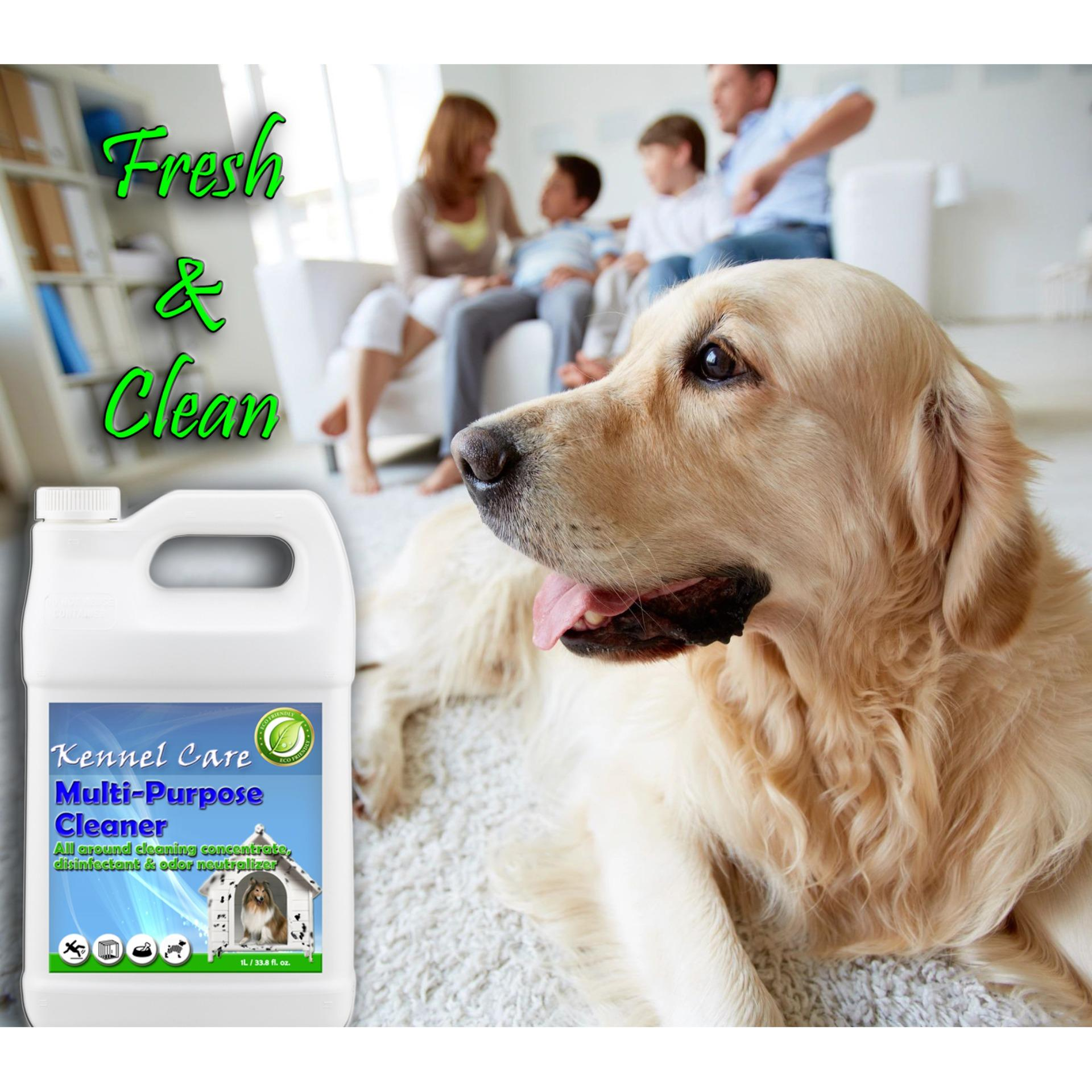 Dog Potty For Sale Puppy Potty Online Brands Prices Reviews In