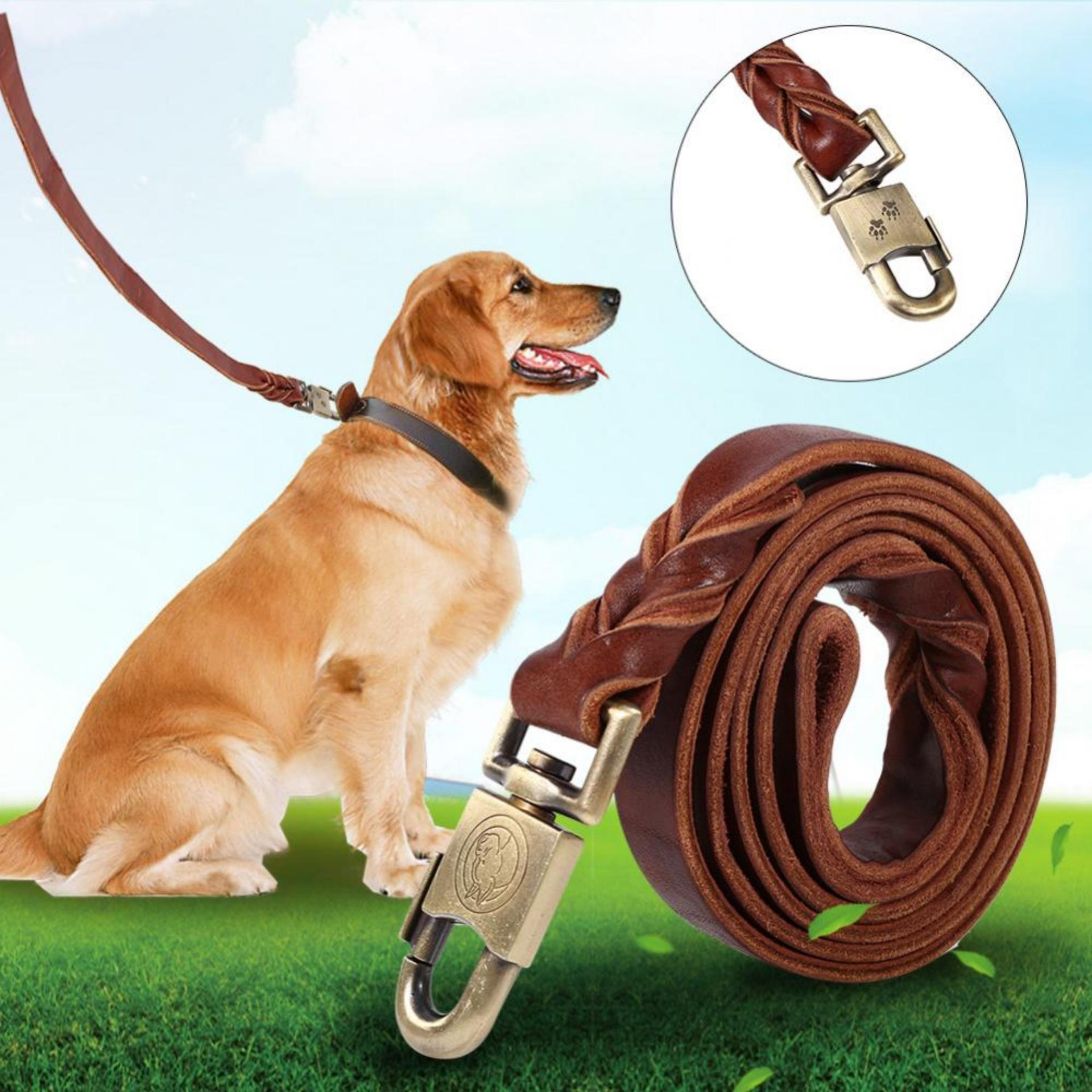 1pc Soft Leather Puppy Dogs Collar Doggie Cats Walking Leash Pet Chain (2.5 x 150cm