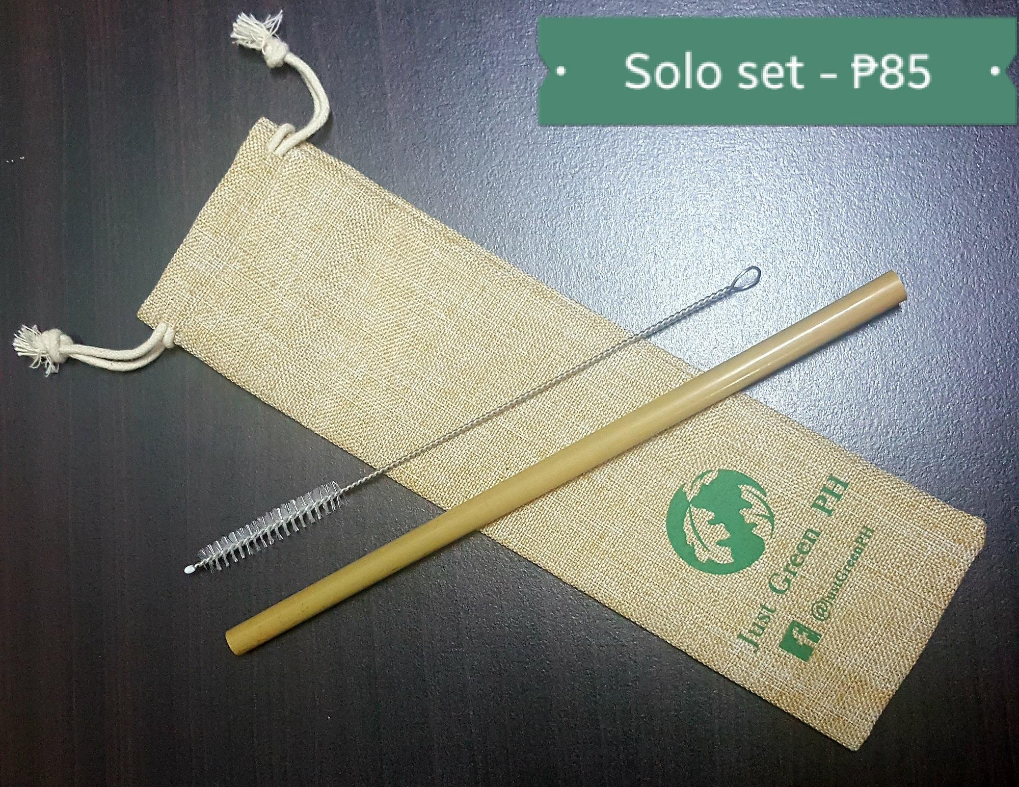 Just Green PH / Pack of 10 Bamboo Straws with 2 Brushes / Pack of 4