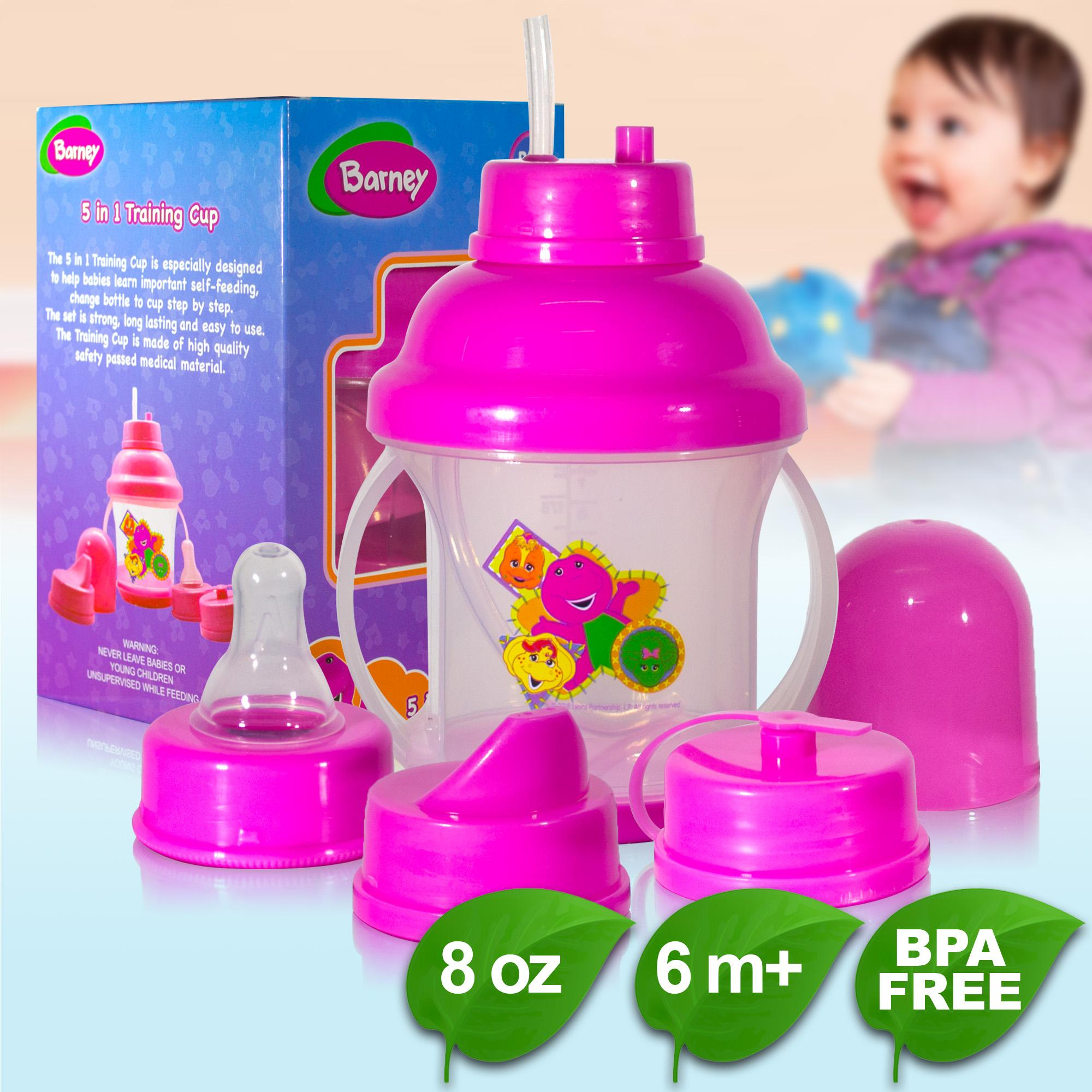 BPA FREE Barney 5 in 1 Training Cup