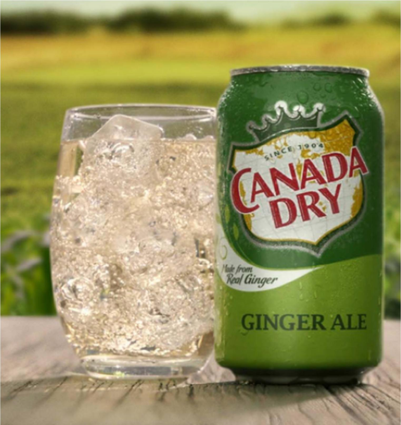 Canada Dry Ginger Ale 12 Fl Oz Pack Of 12 By Rainman.