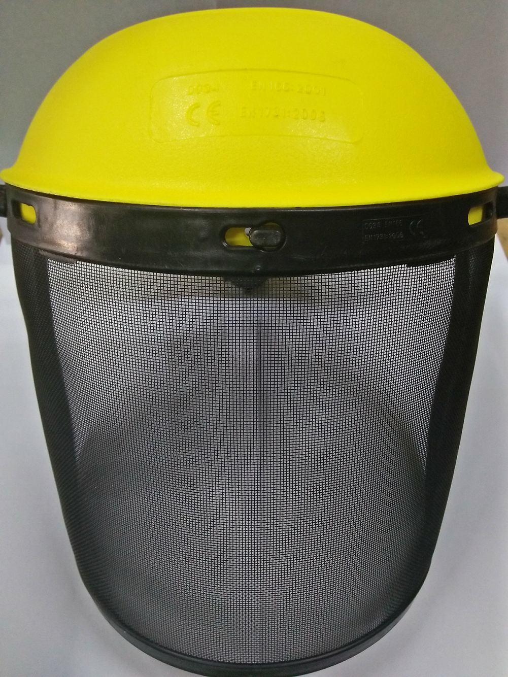 FACE SHIELD MESH TYPE Philippines