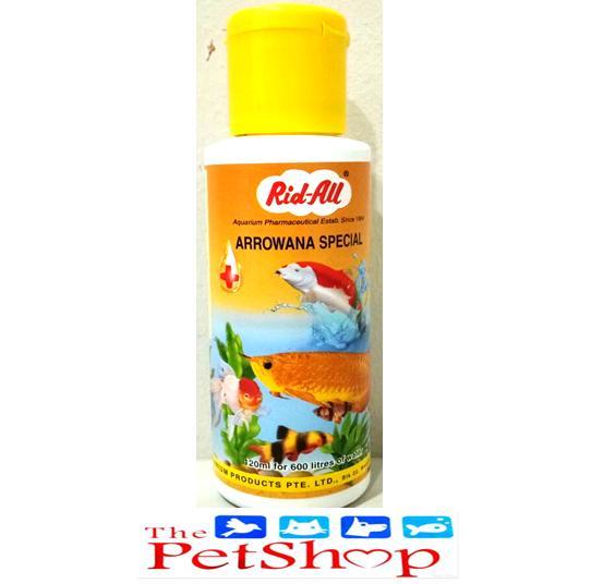 Fish Philippines Fish Price List Aquarium Pet Food Tank