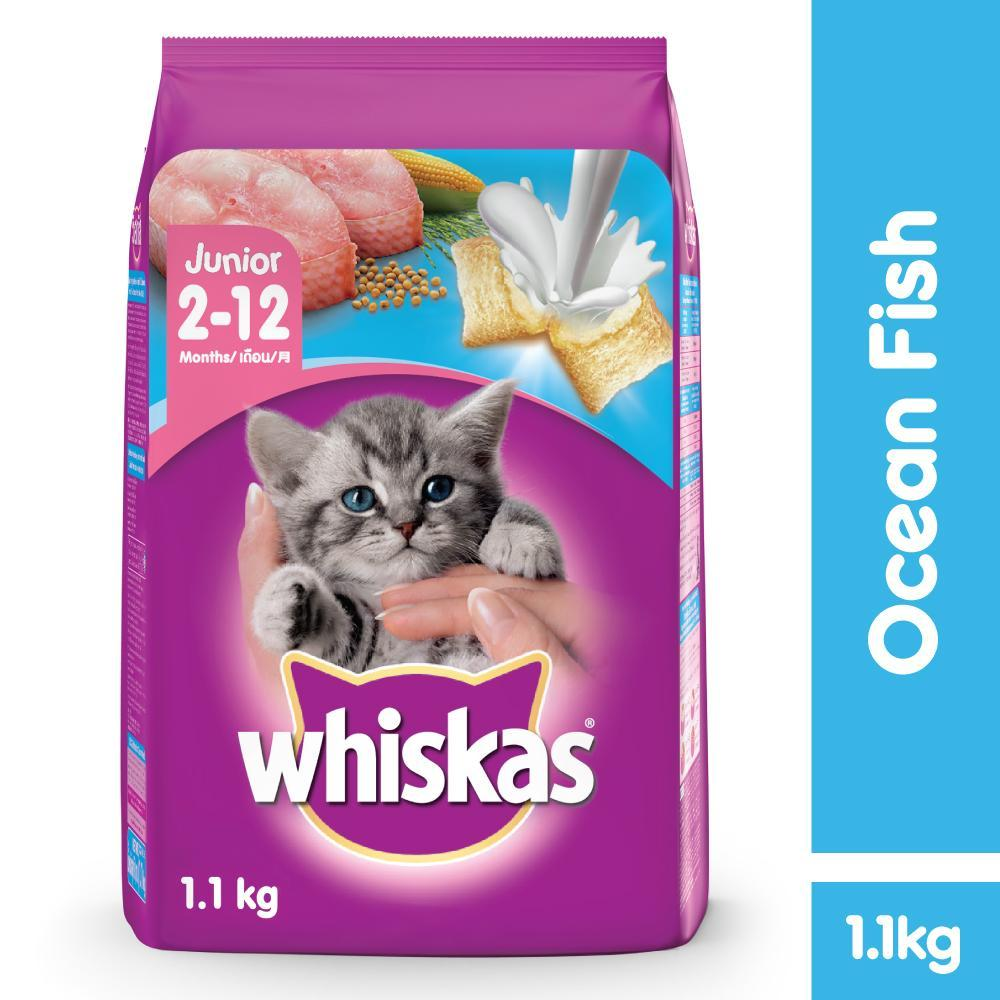 Cat Dry Food For Sale Cats Online Brands Prices Royal Canin Persian Adult 1kg Whiskas Junior Ocean Fish Flavor W Milk 11kg