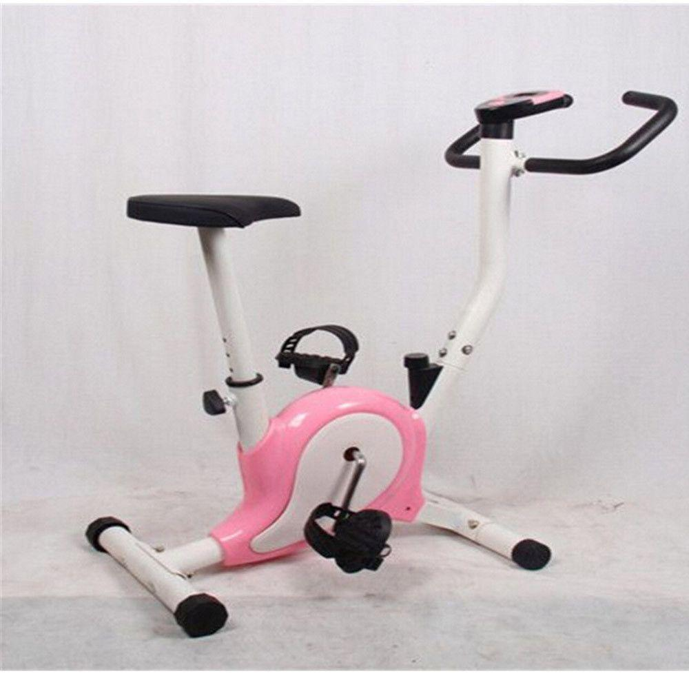 skylinker Indoor Upright Stationary Belt Exercise Bike Resistance Exercise  Power Endurance Body Enhance
