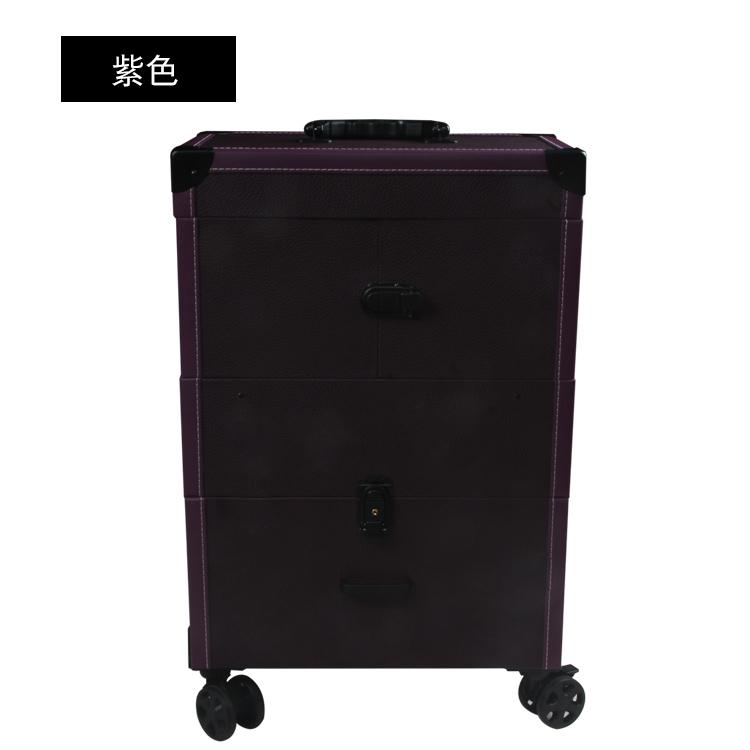 Profession Trolley Cosmetic Case Hand Big Home Service Makeup Manicure Permanent Makeup Hair Dressing Beauty Semi-FOREVER Multilayer Toolbox Philippines