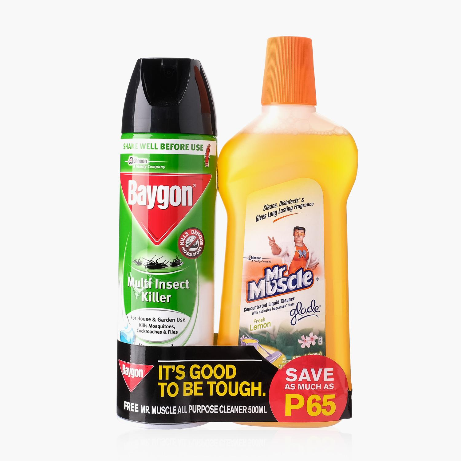 Baygon Multi-Insect Killer 500mL & Mr  Muscle All-Purpose Cleaner