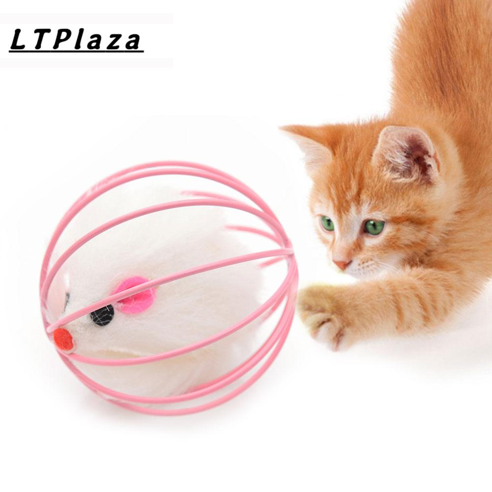 Cat Toys For Sale Kitten Online Brands Prices Reviews In The Interactive Toy Cats 1cat Accessories To Play With