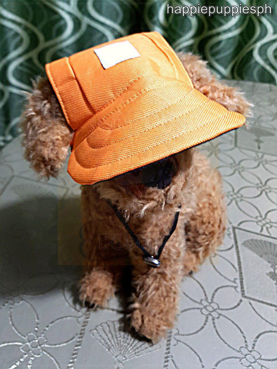 30a517274db Outdoor Baseball Cap Hat Summer for Pets Dogs Cats Small to Big Dogs   Medium