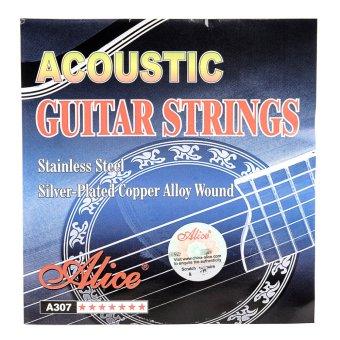 Alice Guitar String (Silver) - 2