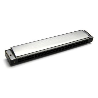 HKS 24 Holes Tremolo Tuned Harmonica Key of C Silver Toy For Kids - Intl - picture 2