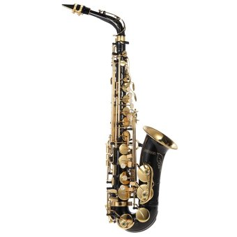 ammoon bE Alto Saxphone Brass Lacquered Gold E Flat Sax 82Z Key Type Woodwind Instrument with Cleaning Brush Cloth Gloves Cork Grease Strap Padded Case Price Philippines