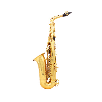 Saxophone Sax Eb Be Alto E Flat Brass Carved Pattern on Surface Plastic Mouthpiece Exquisite with Gloves Cleaning Cloth Brush Straps Price Philippines