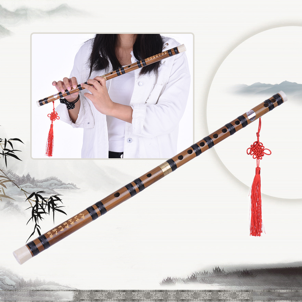 ... Pluggable Handmade Bitter Bamboo Flute/Dizi Traditional Chinese Musical Woodwind Instrument in E Key for ...