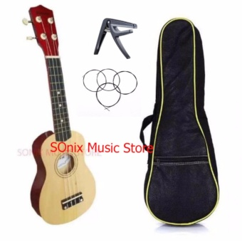 Premier Natural Concert ukulele Package