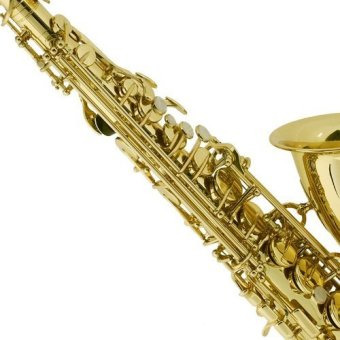 Thomson Tenor Saxophone (Gold) - 2