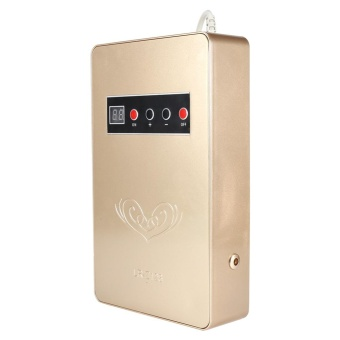 220V 50Hz 600mg/h Household Water Food Sterilizer Purifiers(Gold) - intl - 4