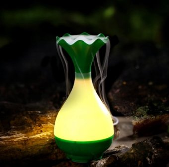 Mr.J Magic Bottle 3 in 1 LED Night Light USB Essential OilUltrasonic Air Humidifier Aroma Diffuser (Green)