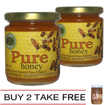 Natural Pure Raw Honey Buy 2 Take 1 Cooltura Peanut Brittle Price Philippines