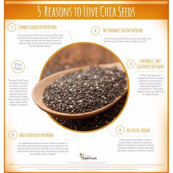 Set of 2 - nutriFAM USA Chia Seeds 500g - 2