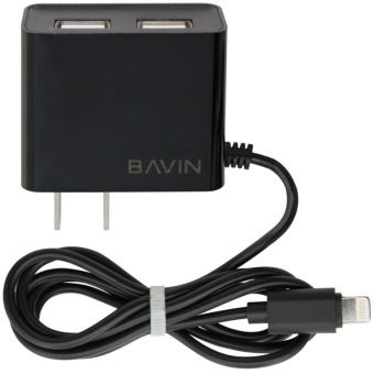 Bavin Fast Charger with 2 extra USB Ports for iPhone 5s (Black)