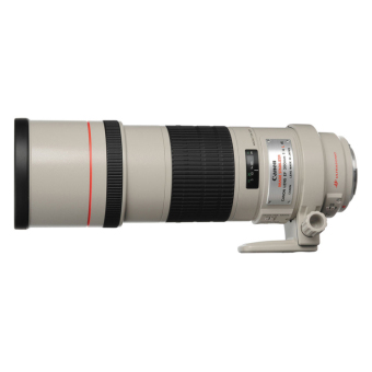 Canon EF 300mm f/4L f4L IS USM Lens White - picture 2