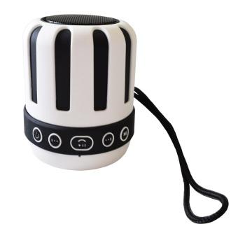 Dani's Choice ds-715 Wireless speaker (White)