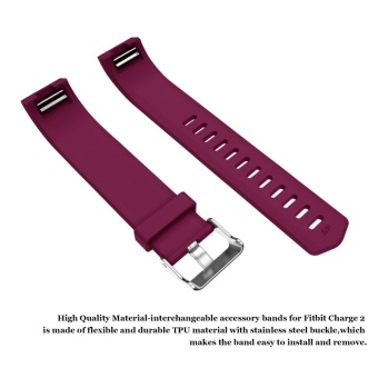 Hanlesi Fitbit Charge 2 Bands, Soft Silicone Replacement WatchbandSports Fitness Strap Band for Fitbit Charge 2 Wristband - intl - 5