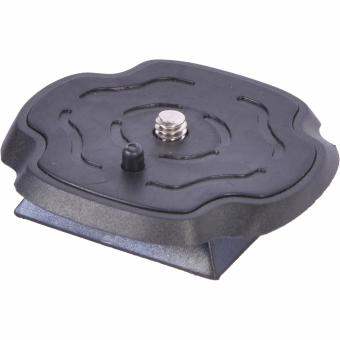 Benro Quick Release Plate B388 for T800EX Price Philippines