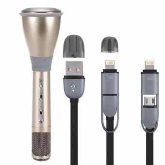 Mini Karaoke K068 Home KTV Handheld Wireless Bluetooth Microphonewith Mic Speaker (Gold) with 2 in USB Cord Color May Vary Price Philippines