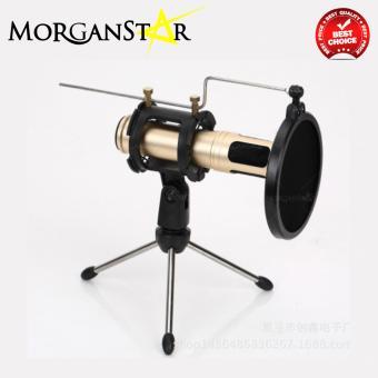 Morganstar Q30 Condenser Sound Recording Microphone (Pink) - 3