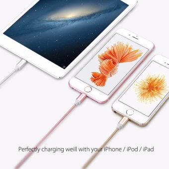 UGREEN Metal Alloy USB Lightning Cable USB Charger Cable NylonBradied Design for iPhone 4 5 6 7 iPad - Silver,1M - intl - 4
