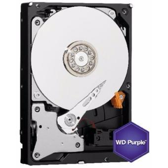 Western Digital WD Purple 1TB Surveillance Hard Disk Drive -WD10PURX - 3