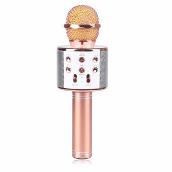 WS-858 Wireless Karaoke Bluetooth Microphone HIFI Speaker (Rose Gold) - 5