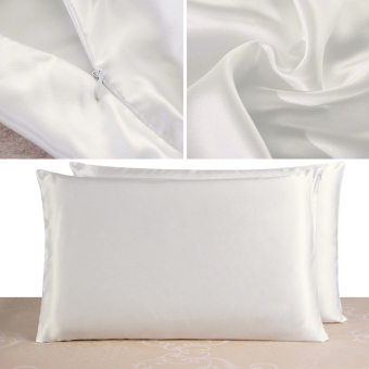 100% Pure and Organic Mulberry Silk Pillow Case - 19 Momme Ivory White - intl