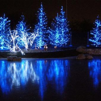 10m 100 Light Strip Lamp Blue Waterproof Outdoor Christmas 220V AC (Intl)