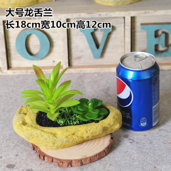 Country American model succulent plant decorative Ornaments