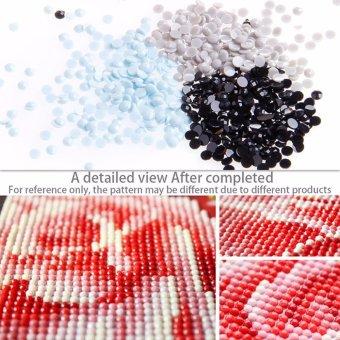 DIY 5D Diamond Embroidery Painting Cross Stitch Art Craft HomeOffice Decor X142 (40x30cm) - intl - 4