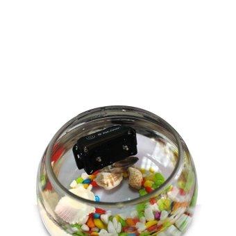 Easybuy Electric Trainer E-Collar Waterproof Remote Pet Dog ShockTraining Collar EU plug (Intl) - 5