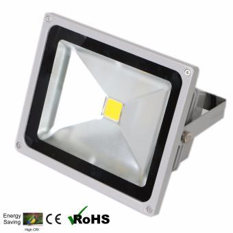 EcoGreen 50 Watts Outdoor LED Floodlight Warm White (Grey)