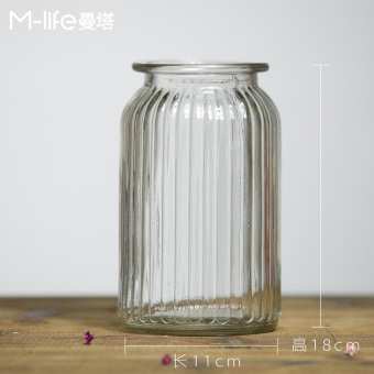 IKEA indie transparent glass lucky bamboo hydroponic vase