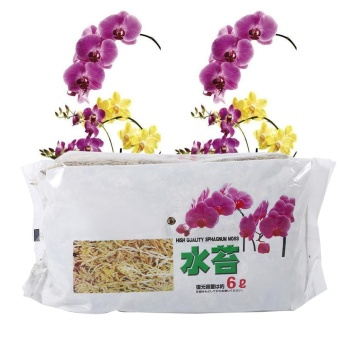 6L Garden Sphagnum Moss Moisturizing Nutrition Organic Fertilizer For Phalaenopsis Orchid - intl Price Philippines