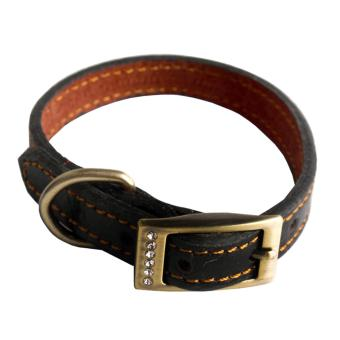 Andux Leather Padded Dog Collar Dog Training Leashes CW-XQ01(1.2cm) - intl Price Philippines