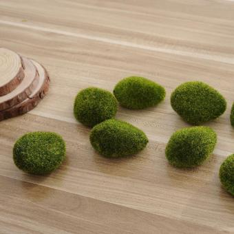 Aquarium Moss ball 5Pcs Marimo Aquarium Plant Cladophora Underwater Fish - intl Price Philippines