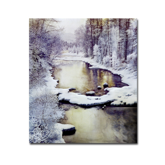 Harga 60X70CM Oil Paintings Beautiful White Snow Image Wall Arts No Frame - Intl