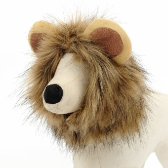 Harga Pet lion ear hat (L) (Intl) - intl