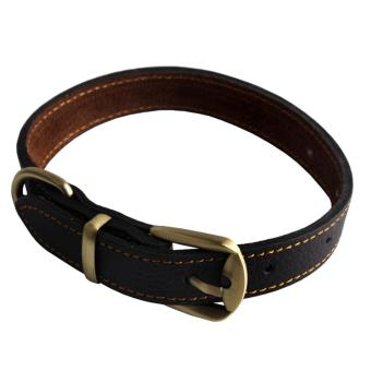 Andux Leather Padded Dog Collar Dog Training Leashes CW-XQ01(2cm) - intl Price Philippines