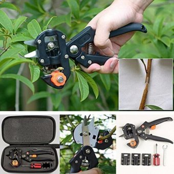 Harga Abusun New Garden Fruit Tree Pro Pruning Shears Scissor Grafting cutting Tool garden tools set pruner Tree Cutting Tool - intl